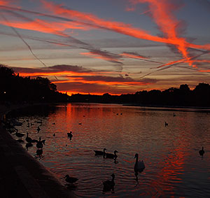 Sunset over the Serpentine